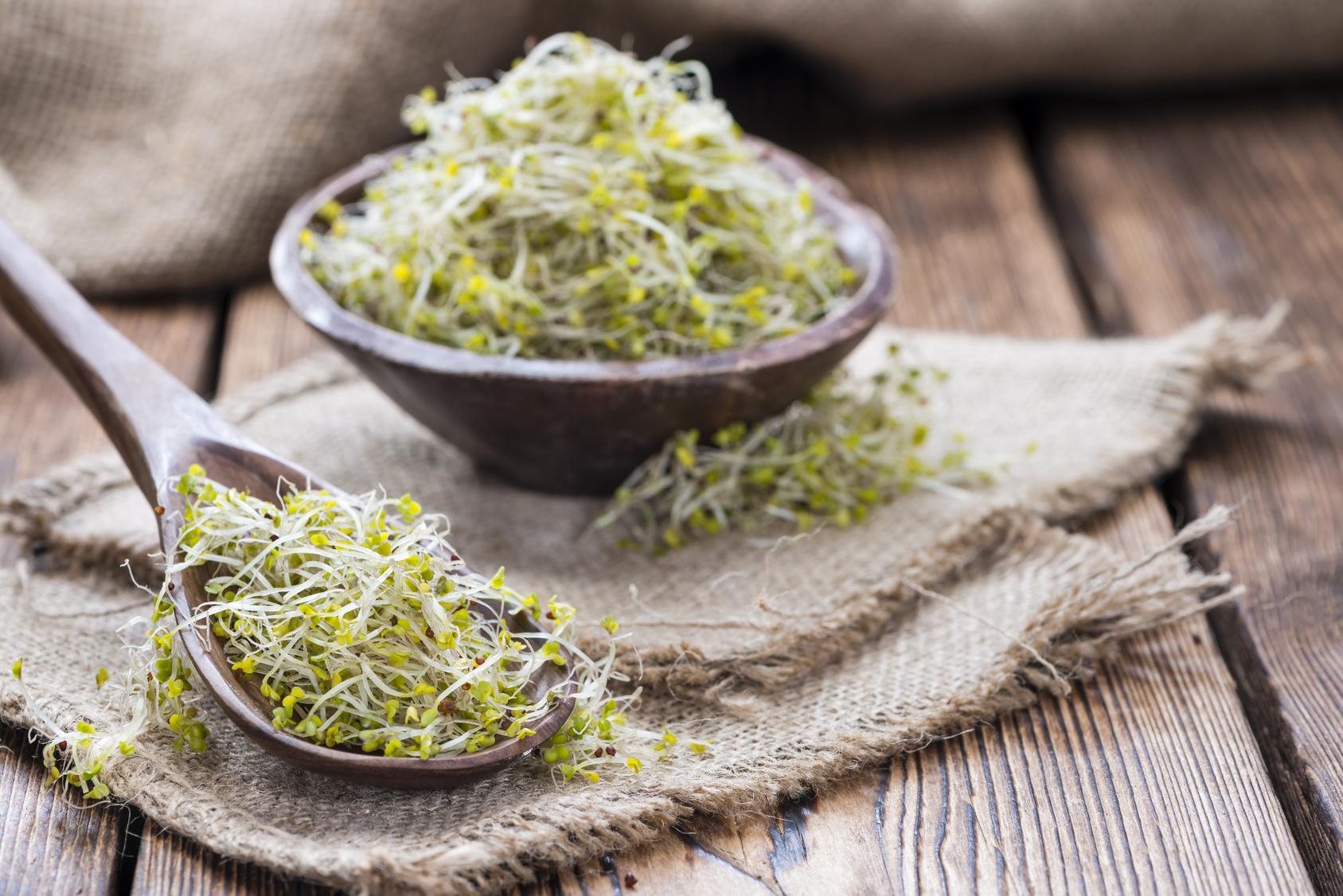 Kiełki brokułów od Home&Kitchen Garden pokazują nowotworom, gdzie raki zimują