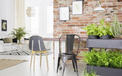 Dekoracyjne wartości ziół, warzyw i herbat od Home&Kitchen Garden